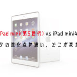 padmini5-ipadmini4-difference