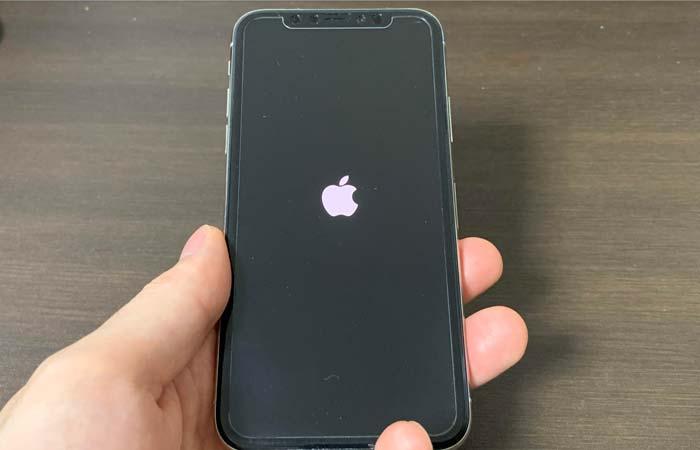 アップルのリンゴマークが表示されて電源が入らない場合
